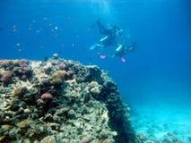Due operatori subacquei stanno nuotando Un operatore subacqueo insegna all'immersione subacquea ad un altro fotografia stock