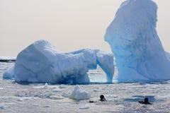 Due operatori subacquei sul ghiaccio Fotografia Stock Libera da Diritti