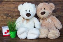 Due orsi di orsacchiotto Fotografia Stock Libera da Diritti