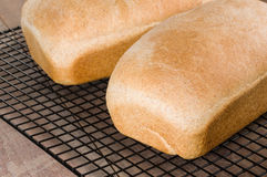 Due pagnotte di pane al forno fresco Fotografia Stock