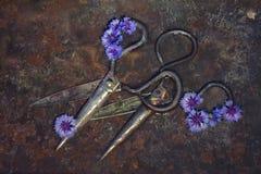 Due paia delle forbici enormi del metallo si trovano diagonalmente sui precedenti arrugginiti, decorati con i piccoli fiori blu d Fotografia Stock