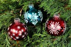 Due palle blu di un e rosse di Natale sugli aghi verdi del pino Fotografie Stock