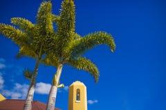 Due palme verdi su priorità alta e sul campanile della chiesa gialla Fotografie Stock