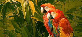 Due pappagalli del Macaw Fotografia Stock