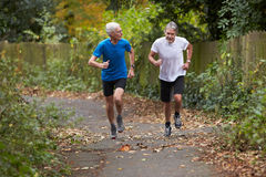 Due pareggiatori maschii maturi che corrono lungo il percorso Fotografia Stock