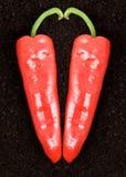 Due peperoni fotografia stock