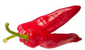 Due peperoni di peperoncini rossi Fotografia Stock