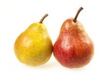 Due pere Immagini Stock