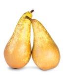 Due pere mature Immagini Stock
