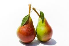 Due pere mature con il foglio Immagini Stock Libere da Diritti