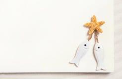 Due pesci bianchi con le stelle marine su un fondo bianco di estate per fotografia stock