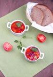 Due piatti con minestra Fotografia Stock Libera da Diritti