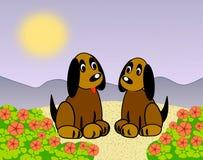 Due piccoli cani Fotografia Stock Libera da Diritti