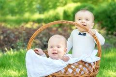 Due piccoli infanti di immaginazione felice in vestiti bianchi con le cravatte a farfalla che si siedono in un grande canestro di immagini stock