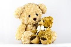Due piccoli orsi Fotografie Stock Libere da Diritti