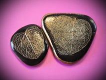 Due pietre con gli scheletri delle foglie Immagine Stock