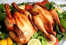 Due polli cotti fotografie stock libere da diritti