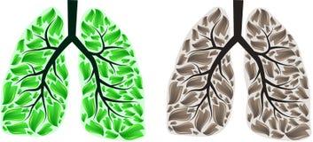 Biomagnet contro fumo di zerosmoke