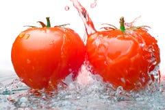 Due pomodori ed acque Fotografia Stock Libera da Diritti