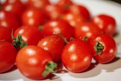 Due pomodori, isolati su fondo bianco Fotografia Stock