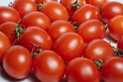 Due pomodori, isolati su fondo bianco Fotografia Stock Libera da Diritti