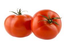 Due pomodori maturi rossi Fotografia Stock Libera da Diritti