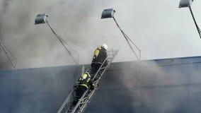 Due pompieri estinguono il fuoco che sta su un'alta scala archivi video