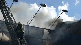 Due pompieri su una scala metallica estinguono il fuoco con acqua archivi video