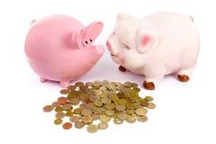 Due porcellini salvadanaio con le euro monete su bianco Fotografia Stock Libera da Diritti