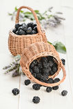 Due pottles di backberry fresco Fotografia Stock Libera da Diritti