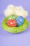 Due pulcini ed uova di Pasqua fotografia stock