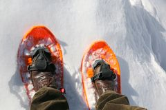 Due racchette da neve arancio e le gambe della viandante dell'alta montagna Fotografia Stock Libera da Diritti