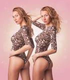 Due ragazze bionde sexy sveglie dei gemelli in costume da bagno Fotografie Stock Libere da Diritti