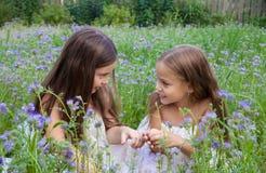 Due ragazze che parlano in via strettamente confidenziale nell'erba alta Immagine Stock