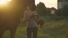 Due ragazze con i cavalli all'aperto video d archivio