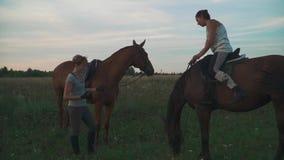 Due ragazze con i cavalli sul campo archivi video