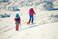 Due ragazze con un cane Fotografia Stock