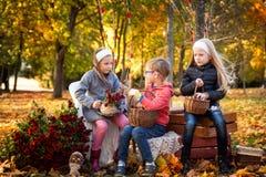 Due ragazze e un ragazzo in autunno parcheggiano Fotografia Stock Libera da Diritti