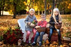 Due ragazze e un ragazzo in autunno parcheggiano Immagine Stock Libera da Diritti