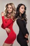 Due ragazze eleganti che posano insieme Fotografia Stock