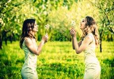 Due ragazze graziose nel blowball di salto del giardino fiorisce Fotografie Stock Libere da Diritti