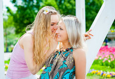 Due ragazze nel parco Immagine Stock