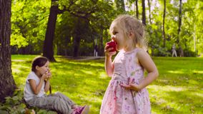 Due ragazze nel parco che mangiano granato stock footage