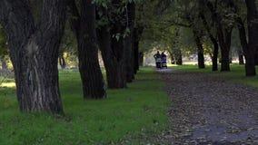 Due ragazze nella sosta Signore con le sedie a rotelle nel parco video d archivio