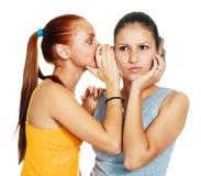 Due ragazze pettegolanti Immagine Stock Libera da Diritti