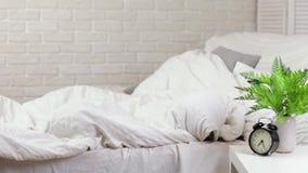 Due ragazze sveglie dei piccoli bambini coprono di coperta video d archivio