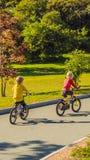 Due ragazzi felici che ciclano nel FORMATO VERTICALE del parco per la storia di Instagram o la dimensione mobile di storie Carta  fotografie stock