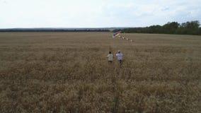 Due ragazzi stanno correndo lungo un giacimento di grano con un aquilone teamwork Giochi all'aperto, sogni di infanzia video d archivio