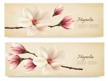 Due retro belle insegne della magnolia Immagine Stock Libera da Diritti