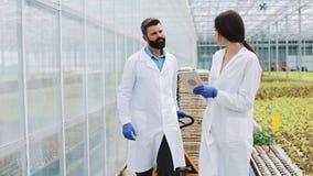 Due ricercatori in abiti del laboratorio camminano intorno alla serra con una compressa stock footage